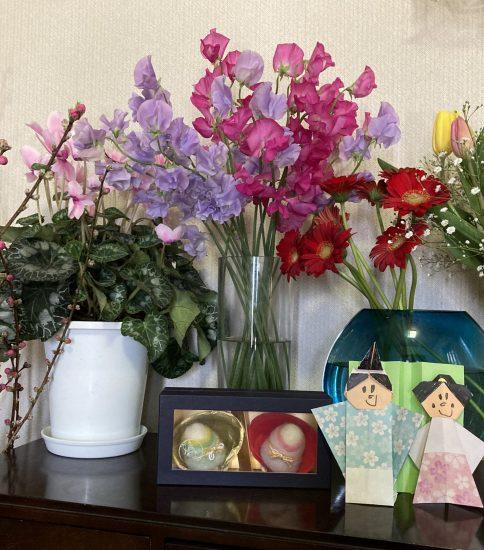 お花をいただきました🌷